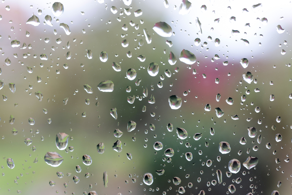 Water drops on a glass window